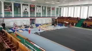 Соревнования спортивная гимнастика  3 разряд Арефьев Егор(2)