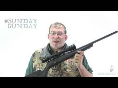 #SundayGunday: Savage Arms B22 FV