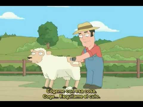 ESQUILANDO UNA O...Sheep Shearing Clip Art