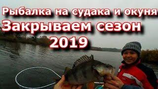 Рыбалка на спиннинг Ловля судака и окуня Закрываем сезон 2019