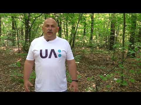 Телеканал UA: Житомир: Вплив лісу на клімат_Ранок на каналі UA: ЖИТОМИР 16.08.19