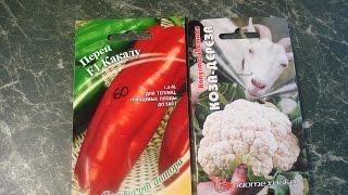 """Домашние хлопоты.Цветная капуста  """"Коза дереза"""",сл.  перец """"Какаду""""и заморозка овощей."""