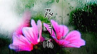 """Aoi Shigure (Malva Drizzle) It is included in the free album """"Singl..."""