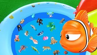 Learn Words for Kids with Nemo - Sea and Wild Animals | Toys for Kids | Lum Sum Kids