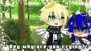 Why are you crying? meme || {Miraculous Ladybug} || AU || Original?