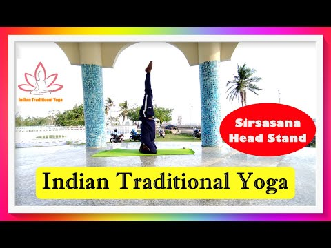 sirsasana  the head stand  indian traditional yoga