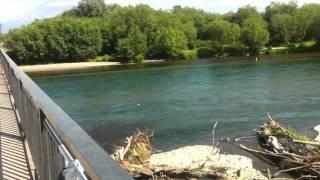 Река Авача летом