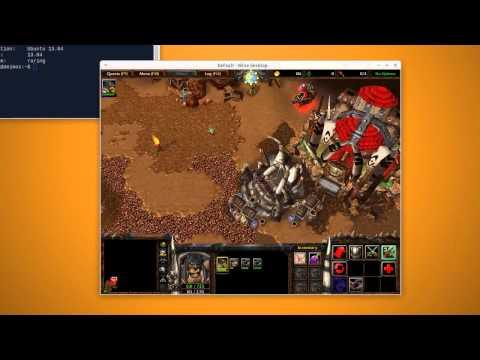 PC Xubuntu 13.04 Warcraft 3 The Frozen Throne Play Test