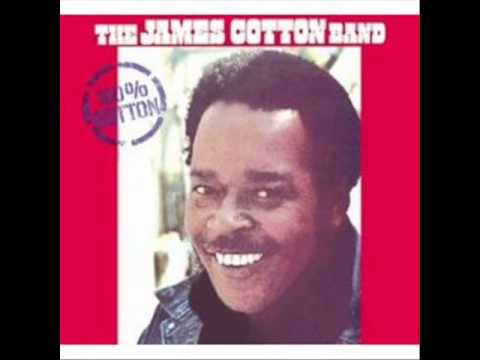 The James Cotton Band One More Mile
