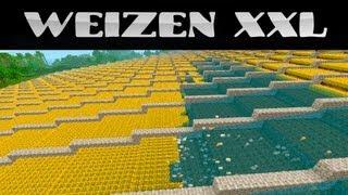 Minecraft Weizenfarm XXL