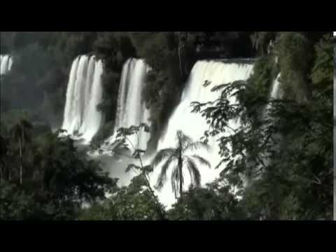 Dark forest psytrance - Spirits Of The Rainforest Dark Psytrance DJ Mix Set