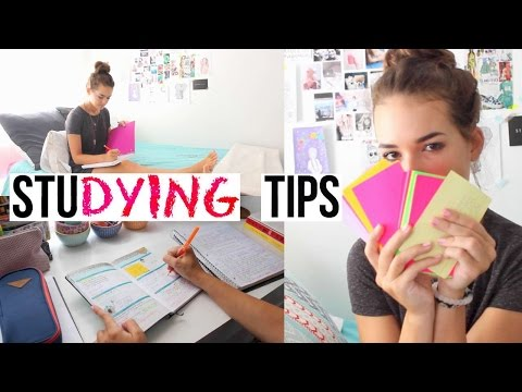 Studying Tips For This School Year