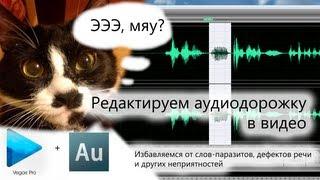 Обработка звука в видео с помощью Sony Vegas Pro и Adobe Audition(В этом видео я рассказываю о том, как убрать речевые дефекты в уже отснятом видео. Подробная статья с фото:..., 2013-05-11T07:18:45.000Z)