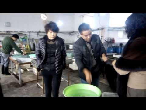 Qingdao LXBD hair factory