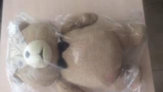 Распаковка посылки из Америки: мишка из фильма Ted  (Третий лишний)