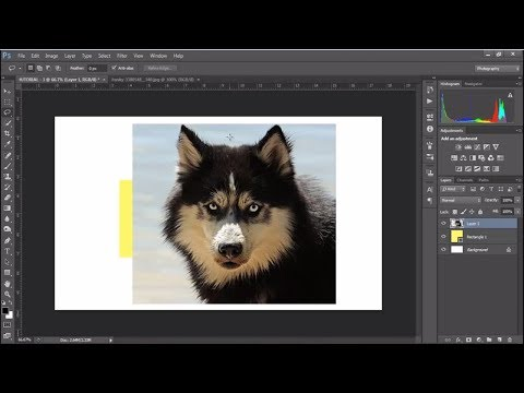 Adobe Photoshop Tutorial (No.3) for Beginners | The Basic Guide [UrduHindi] thumbnail