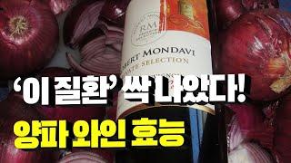 양파 와인을 꾸준히 마…