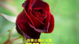 新疆民歌《送我一枝玫瑰花》女声合唱