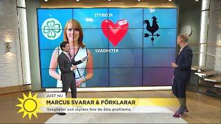Marcus Oscarsson – här är partiledarnas styrkor och svagheter  - Nyhetsmorgon (TV4)