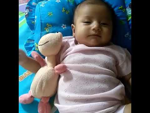 Lucunya Bayi Hidung Mancung Youtube