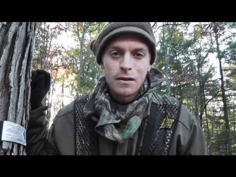 Hunting Wayne National Forest