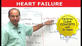 Heart Failure – Cardiac Pathology