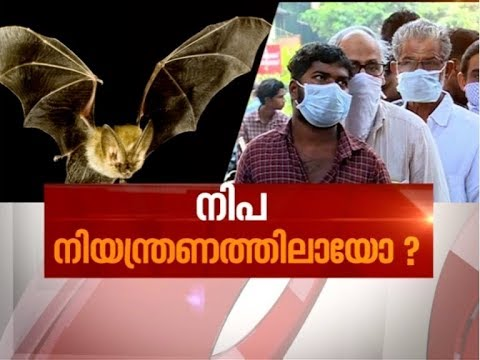 Nipah Virus Outbreak: Situation under control? | News Hour 22 May 2018