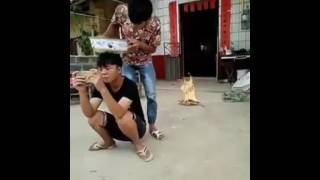 Funny Videos China 2016