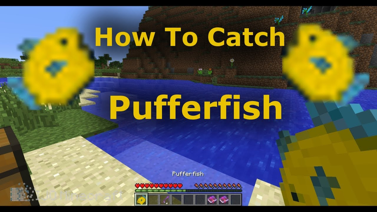 How to catch pufferfish in minecraft 1 7 minecraft for How to fish