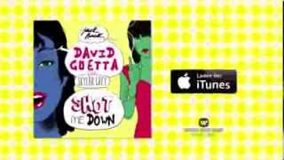 David Guetta feat. Skylar Grey - Shot Me Down (Spot)