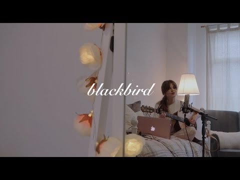 blackbird - beatles - acoustic cover
