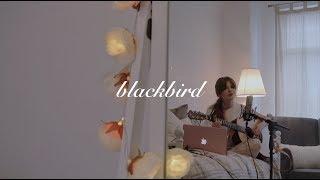 blackbird - beatles - acoustic cover