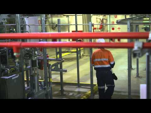 Inside a Natural Gas Plant