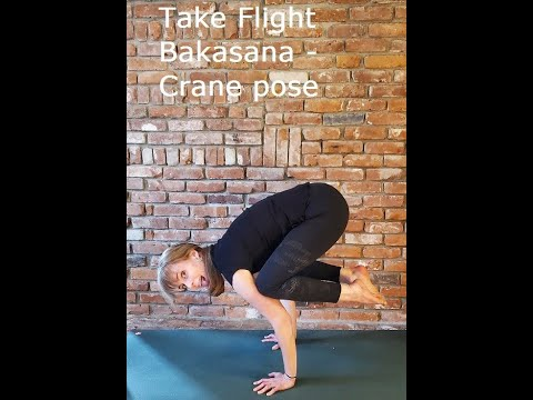 how to approach bakasana crane pose  yoga  youtube