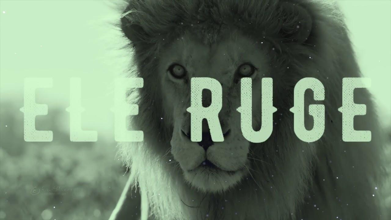 Deus não está morto/Como um leão- Shekinah feat. Tati Teixeira e Marcus Salles- Projeto Vida Nova