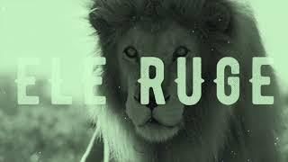 vuclip Deus não está morto/Como um leão- Shekinah feat. Tati Teixeira e Marcus Salles- Projeto Vida Nova