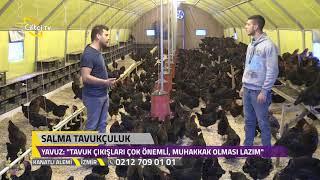Salma Tavukçuluk - Kanatlı Alemi / Çiftçi TV