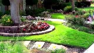 видео Миксбордер в ландшафтном дизайне своими руками: схема, фото, правильный подбор растений