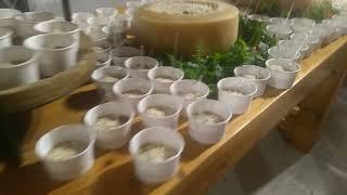 Коктейльная вечеринка Кипр ❤️ Свадьба у киприотов ❤️ Cyprus wedding party