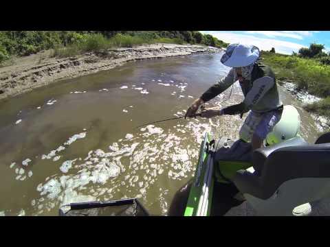 Barramundi Fishing 124cm,98cm,94cm