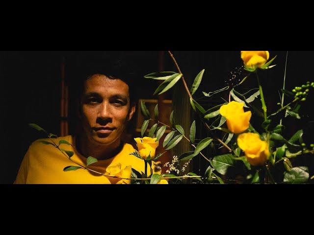 Cinefleur Berlin - Momentum+® Pure Yellow