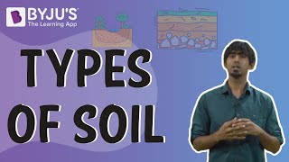 Types of Soil - Sandy, Loamy, Clayey, and Silt Soils