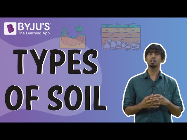 Types Of Soil Sandy Loamy Clayey And Silt Soils