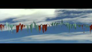 flags in the wind -- redimensionator slitscan