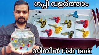 ഗപ്പി വളർത്താൻ ഒരു അടിപൊളി Fish Tank| DIY How to make Aquarium at Home|Low Cost Guppy Tank Malayalam