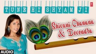 TUNE HI SHYAM JI KRISHNA BHAJAN BY SHIVANI CHANANA, DEVENDRA I AUDIO SONG I ART TRACK thumbnail