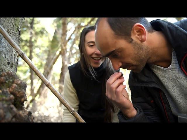 Identidad Patagonia - Capitulo 1: Levaduras de Cerveza - Universidad Nac. del Comahue