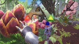 DEZE PLANT WORDT MIJN VERDEDIGING?! - ARK Crystal #19
