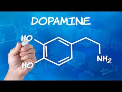 Dopamin Spielsucht