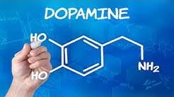 Absturz ins Leben + Dopamin-Kick + Selbstsucht + Spielsucht